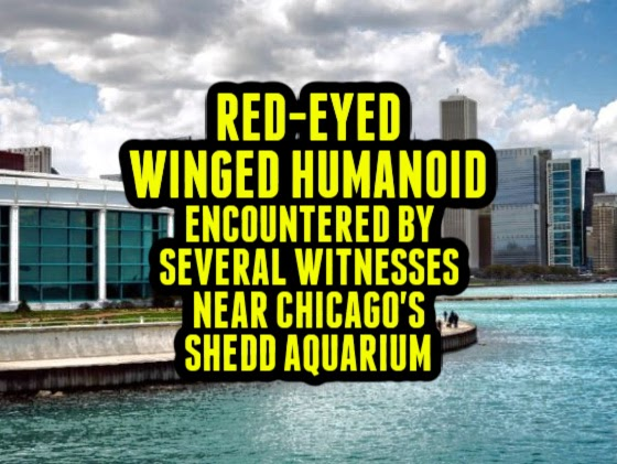 Red-Eyed Winged Humanoid Encountered by Several Witnesses Near Chicago's Shedd Aquarium