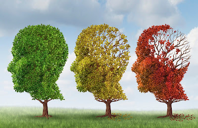 How To Treat Memory Loss With Natural Medicine