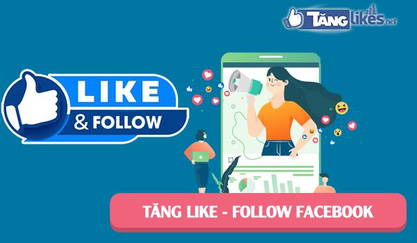 tang follow fanpage