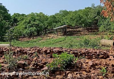 वन विहार नेशनल पार्क भोपाल - Van Vihar National Park Bhopal