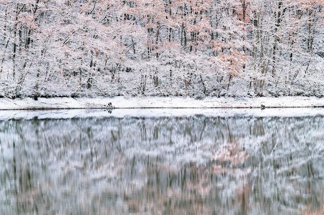#photo #landscape #sigma #foveon #sdquattroh #japan #yamagata #tsuruoka #写真 #風景写真 #山形帝國 #山形県 #鶴岡市