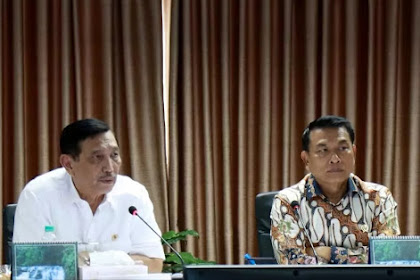 Luhut Minta Jokowi Gelontorkan APBN Beli Mobil Listrik