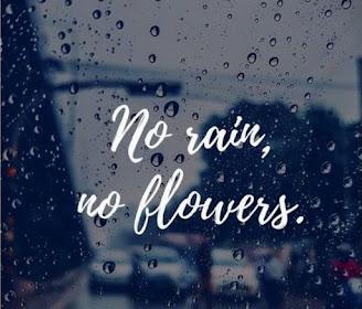 Rain-Pictures-Rain-images-WhatsApp-DP