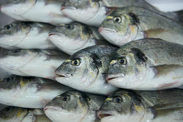Θεσπρωτία: Τα αγροδιατροφικά προϊόντα της Θεσπρωτίας αντέχουν στην κρίση