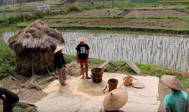 sumber daya alam laos berupa padi