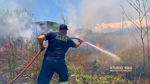 Άμεση επέμβαση της πυροσβεστικής σε φωτιά στη Δαλαμανάρα Αργολίδας