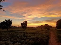 गाँव की शाम