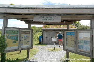 The Nature Conservancy at Cape May Meadows Nature Walk and Bird Watching in New Jersey