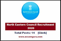 North Eastern Council Job 2020