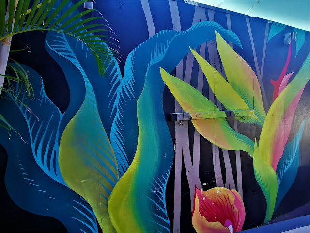 Bangor Street Art | Shannon Crees
