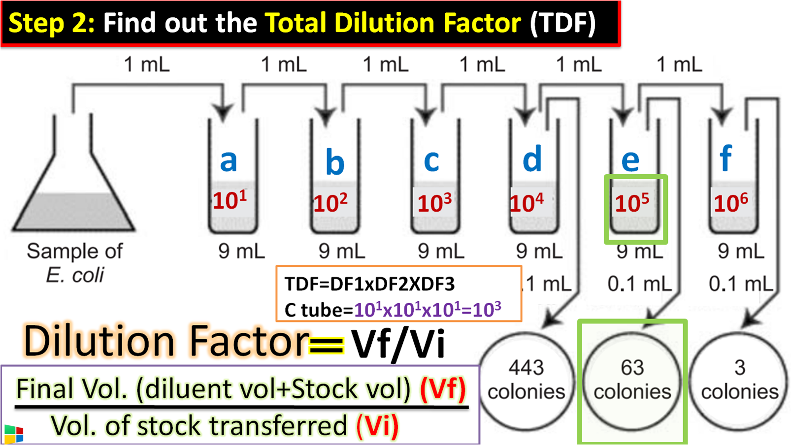 How to the Total Dilution Factor (TDF)