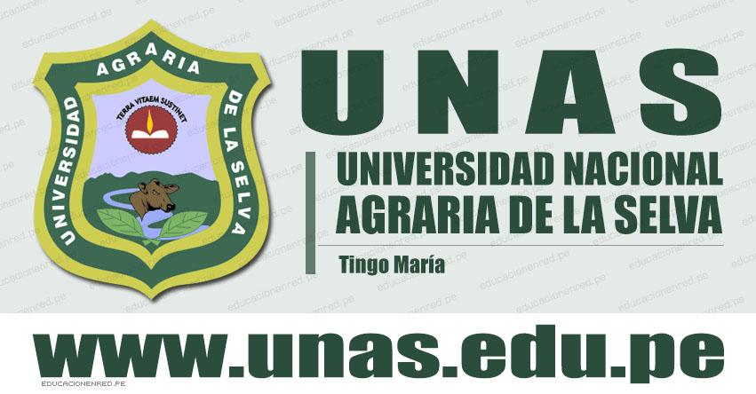 Resultados UNAS 2021-1 (Domingo 28 Marzo) Lista de Ingresantes - Examen Admisión Ordinario - Universidad Nacional Agraria de la Selva - Tingo María - Huánuco - www.unas.edu.pe