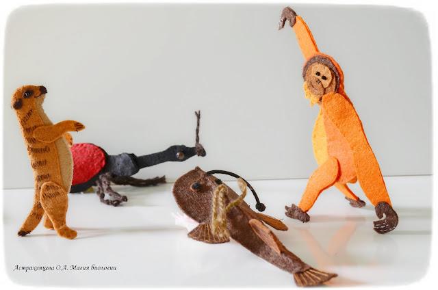 palchikovyj-teatr-orangutan-surikat-udilshhik-dolgonosik