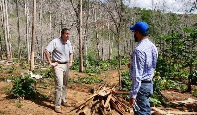 Ministerio Medio Ambiente somete a la justicia agresores de recursos naturales