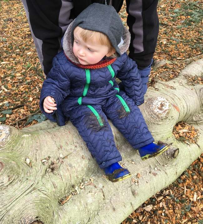 toddler sat on log