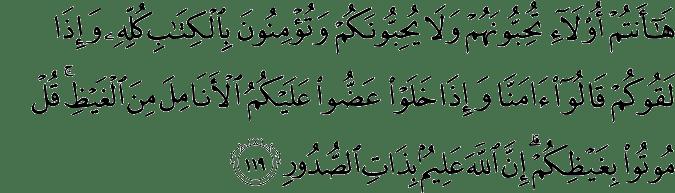 Surat Ali Imran Ayat 119