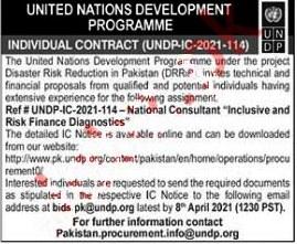 Latest Jobs in  United Nations Development Program UNDP