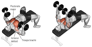 Top 5 Exercises To Build Chest, Flat Bench Dumbbell Press