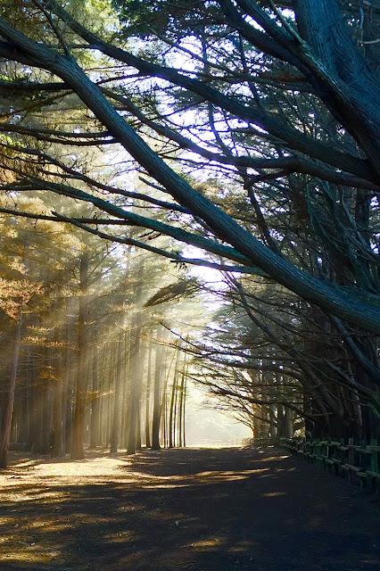 صور خلفيات مناظر طبيعية للايفون HD 6