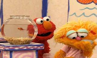 Zoe appears and saying that the rock Rocco is her friend and kisses Rocco. Elmo says Rocco is a rock. Sesame Street Elmo's World Friends