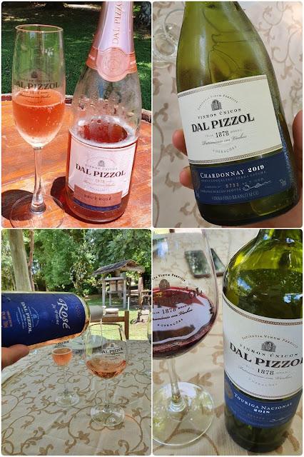 Blog Apaixonados por Viagens - Serra Gaúcha - Vindima - Dal Pizzol Vinhos Finos