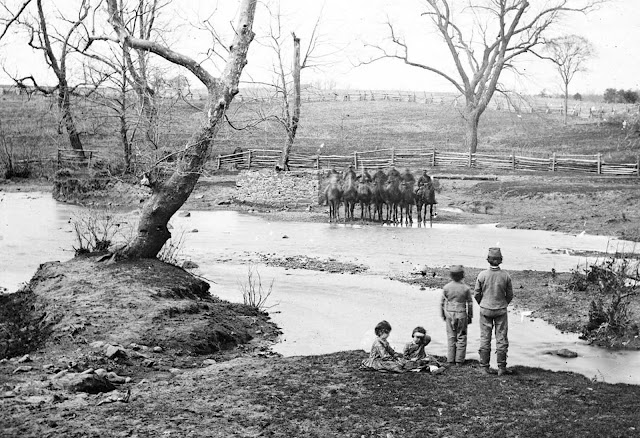 Federal cavalry at Sudley Ford, Virginia, following the battle of First Bull Run, in March of 1862.