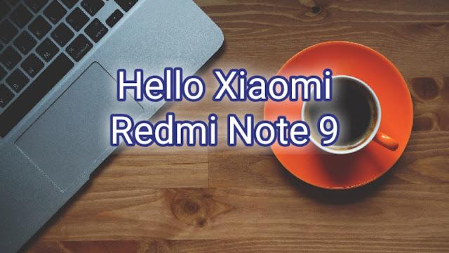 Hello Xiaomi Redmi Note 9 Xiaomiintro