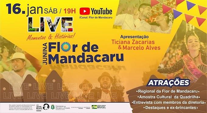 Dia 16/01, às 19h,  haverá a transmissão da Live Flor de Mandacaru de Cariré-CE