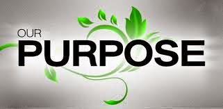our puropse