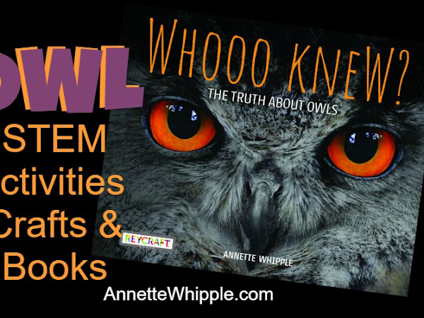 Owl STEM, Crafts, and Books