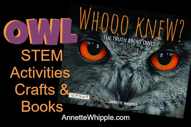 Owl STEM, Crafts, and Books