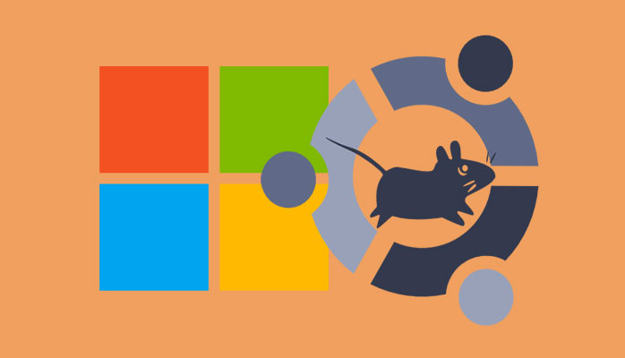 Best Tools To Run Linux Apps On Windows