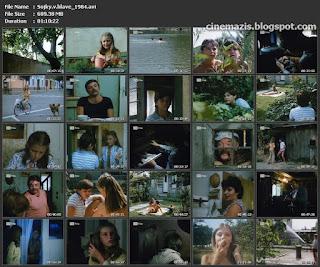 Sojky v hlave (1984)