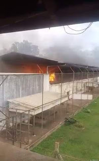 Brazilian Authorities Say 52 Inmates Killed in Prison Riot, 16 Decapitated