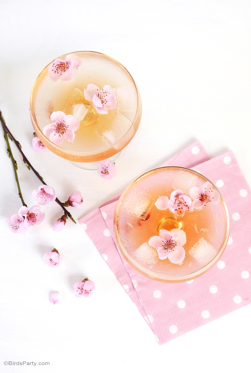 Spring Blossom Cocktail Recipe - BirdsParty.com