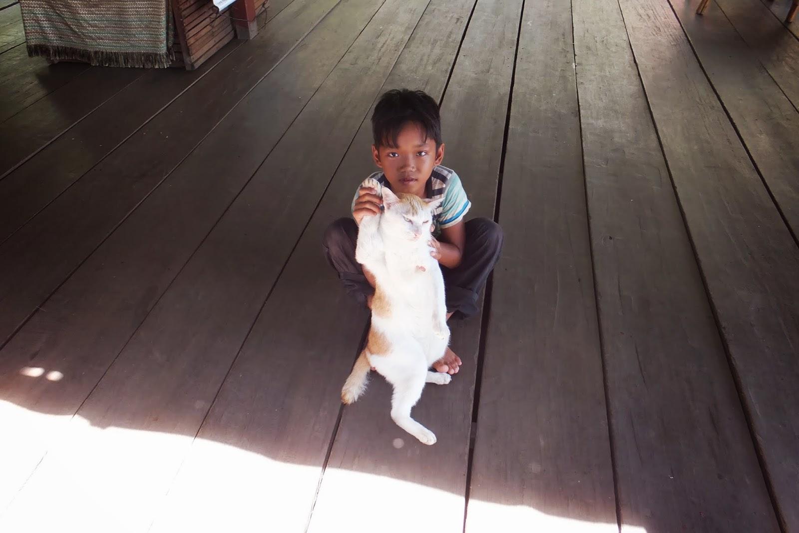 boy-with-cat 猫と遊ぶ少年
