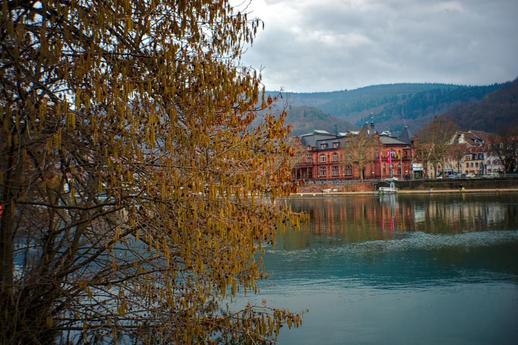 #271 Exaktar Auto f2.8 35mm – Neckarfront in Heidelberg