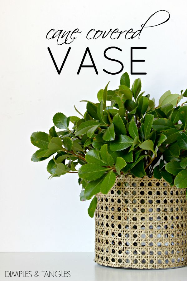 DIY, Cane webbing covered vase, floral arrangement, unique vase