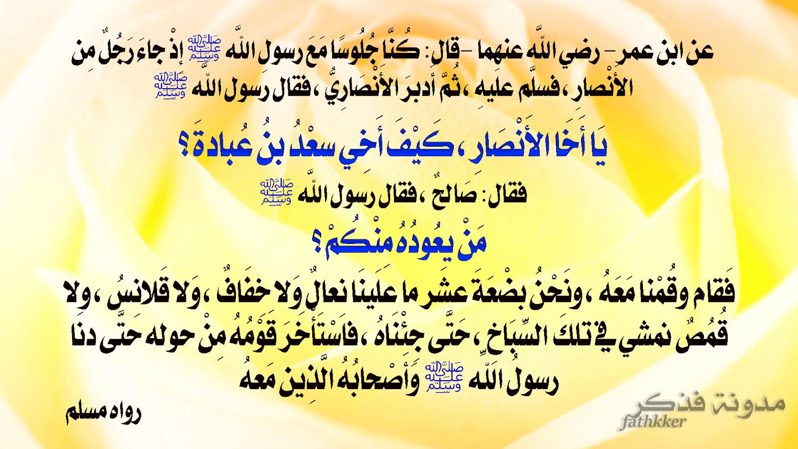 شرح حديث يا أخا الأنصار كيف أخي سعد بن عبادة فذكر