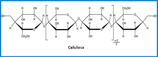 Química Orgánica Carbohidratos
