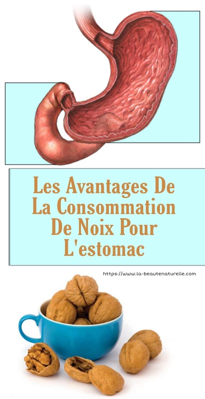 Les Avantages De La Consommation De Noix Pour L'estomac