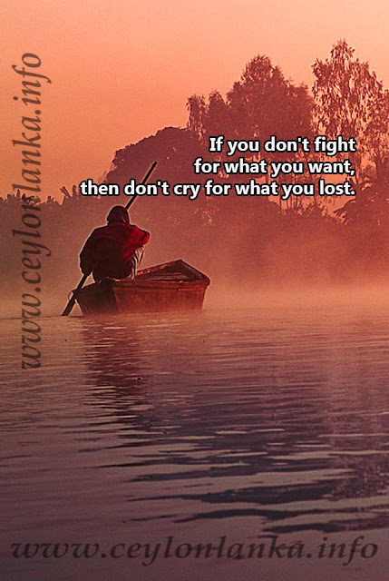 If you don't fight for what you want, then don't cry for what you lost.