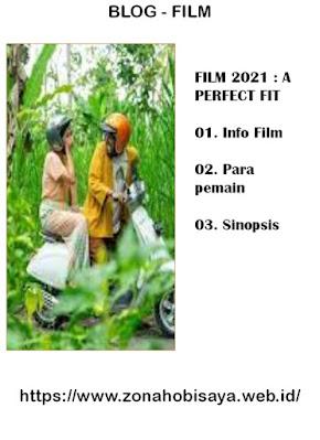 Sinopsis Film Terbaru 2021 A Perfect Fit