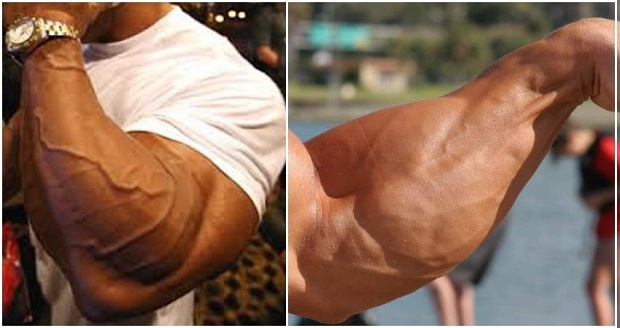 Muscle Day – Workouts For huge Forearms