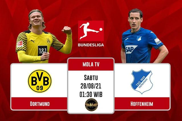 Prediksi Borussia Dortmund Vs TSG 1899 Hoffenheim