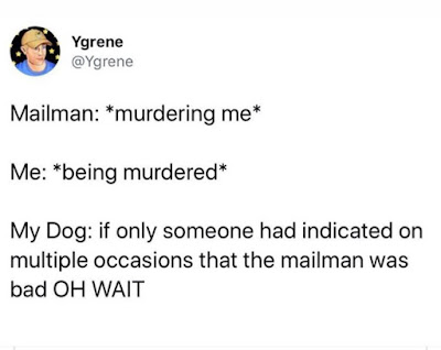 Mailman Murdering Me - Dog, If Only Someone Would Have Warned You