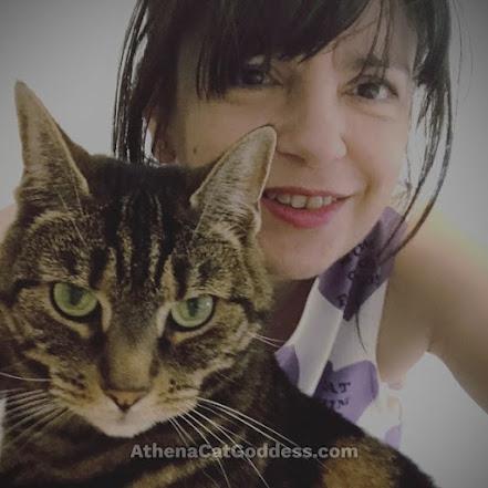 tabby cat and human mum