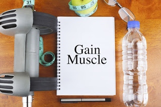 Muscle-Gain-Muscle-Building
