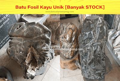 batu fosil kayu cendana