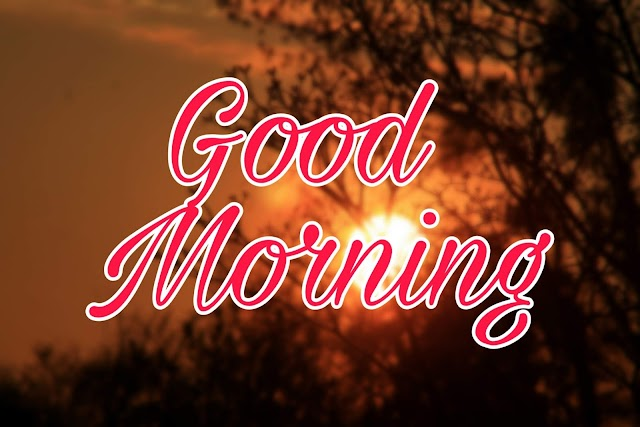 Top 20+ Best Good Morning Whatsapp Status..Hindi [सुप्रभात] Shayari